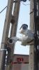 7. Monitoring, kamery ip, telewizja przemysłowa